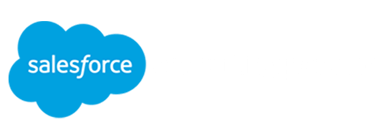 Salesforce Turkey Consulting Partner